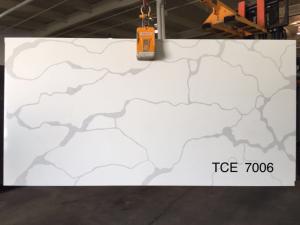 TCE7006