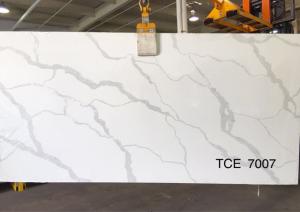 TCE7007