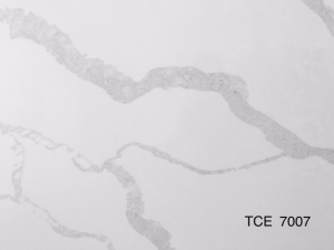 TCE7007 Detail